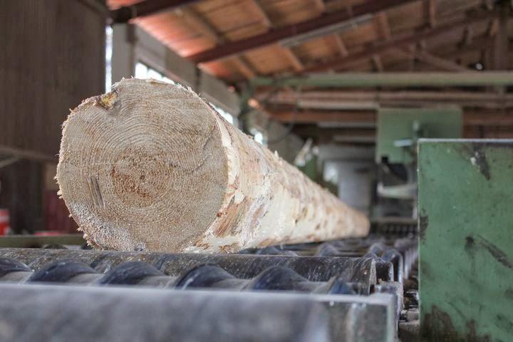 madera y bioconstrucción